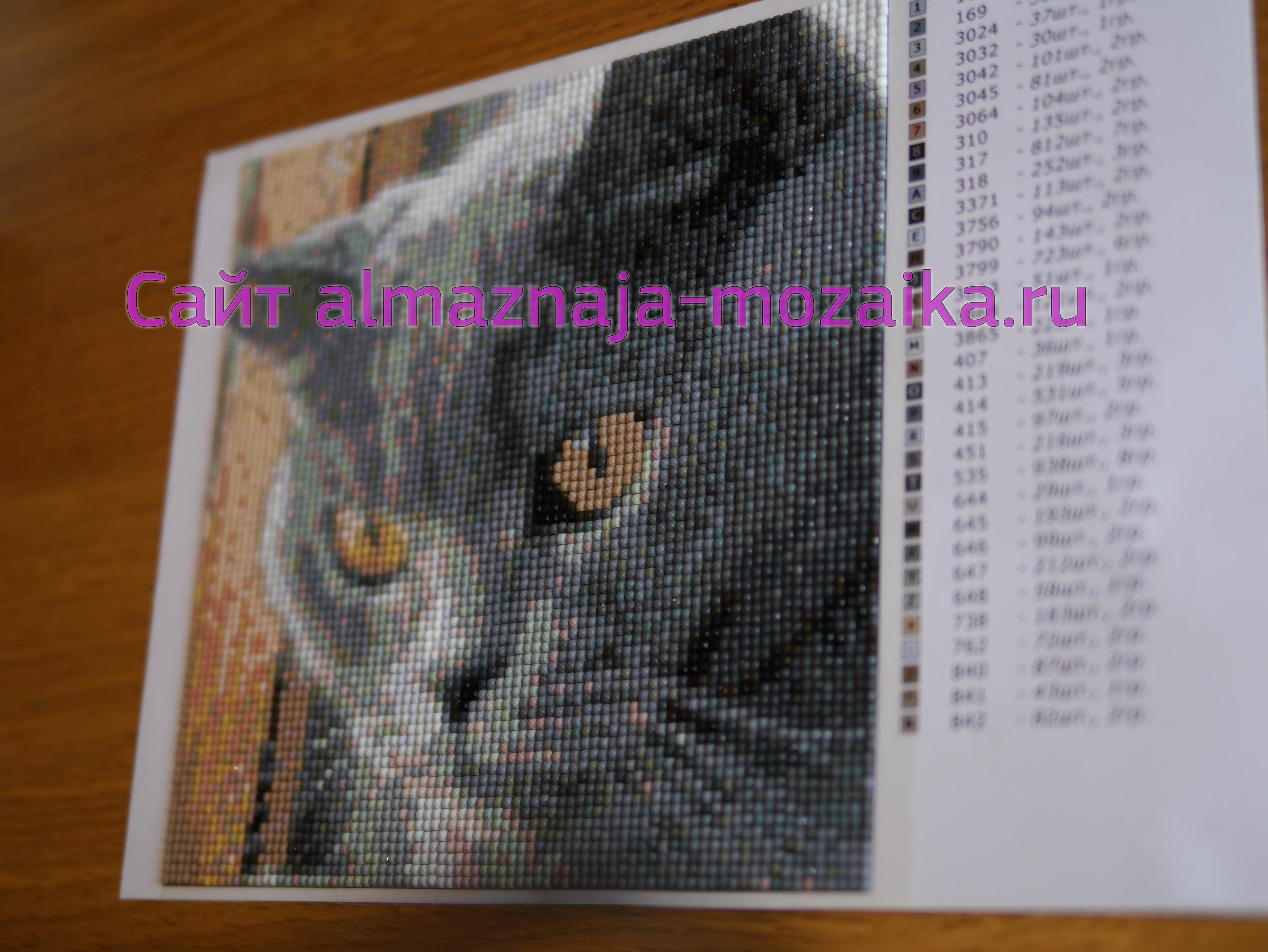 Алмазная вышивка схемы по фото